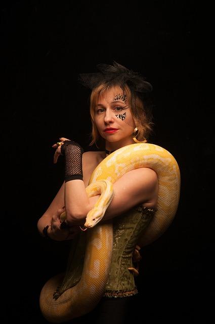 Snake, Address By, Albino, Python, Terrarium, Animals