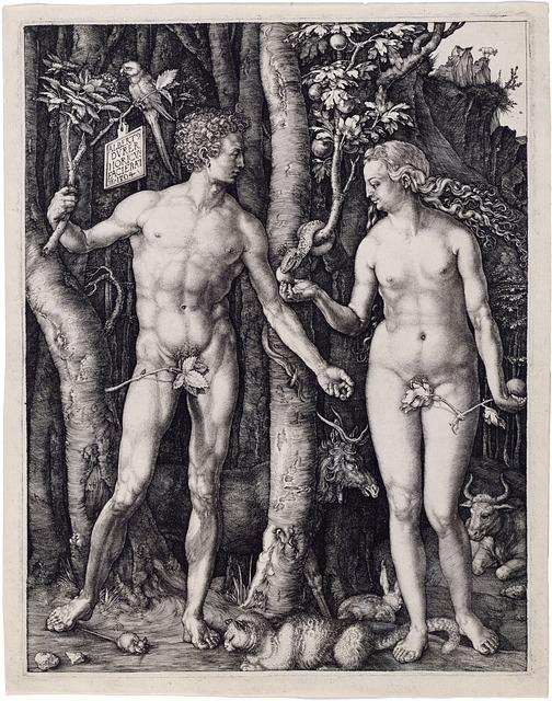 Adam And Eve, Religion, Albrecht Dürer, 1504