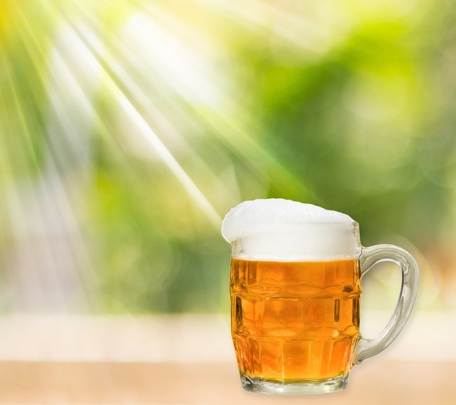 Beer, Tankard, Glass, Alcohol, Ale, Amber, Beverage