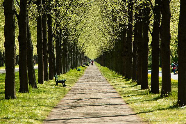 Hanover, Lower Saxony, Manor House, All, Garden, Rest