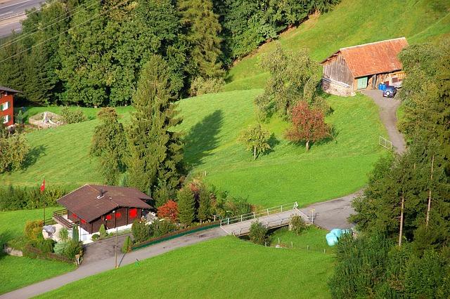 Klewenalp, Mountain Farm, Farm, Meadow, Alm