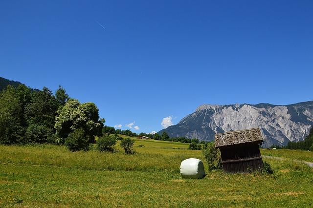 Sautens, Summer, Alm, Pasture, Alpine, Tyrol