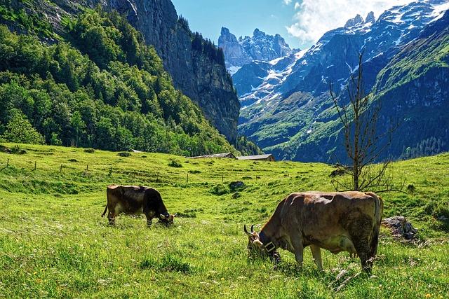 Mountains, Alp, Alpine, Landscape, Switzerland, Nature