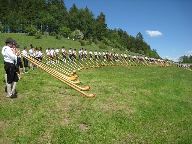 Allgäu, Alphorn, Alphorn Wind Meeting, Costume, Meadow