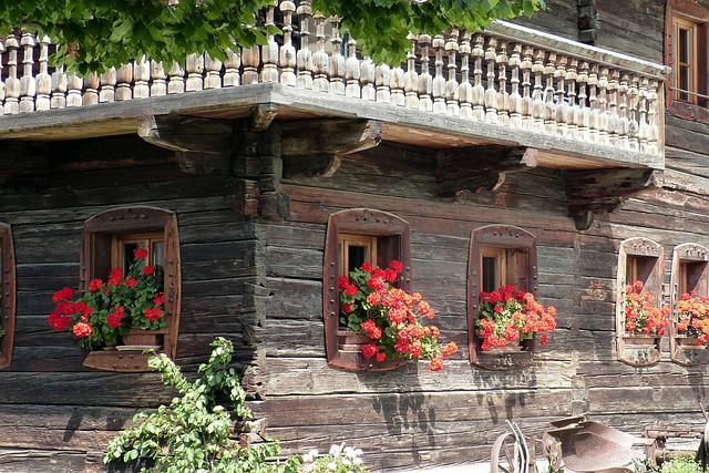 Vacation, Block House, Floral Decorations, Old, Alpine