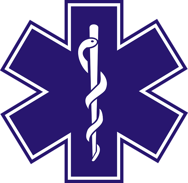 Paramedic, Medical Emergencies, Medicine, Ambulance