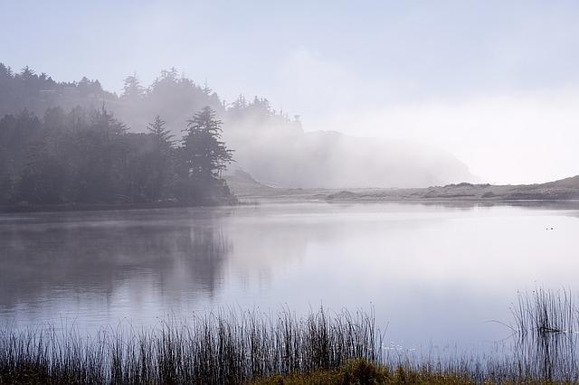 Lake, Oregon, Fog, Garrison Lake, Port Orford, America