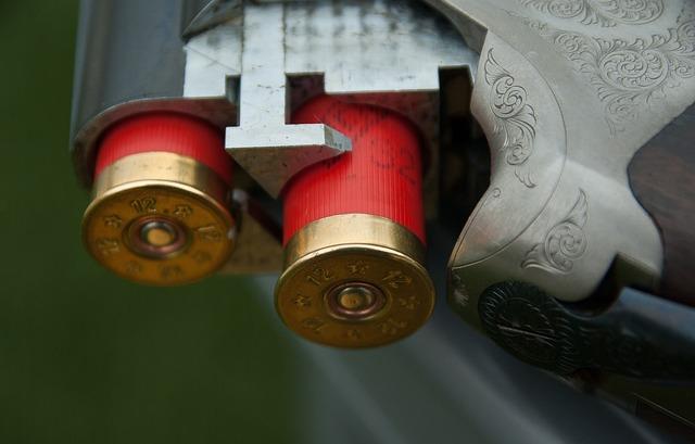 Gun, Canon, Cartridges, Hunting, Ammunition, Weapon