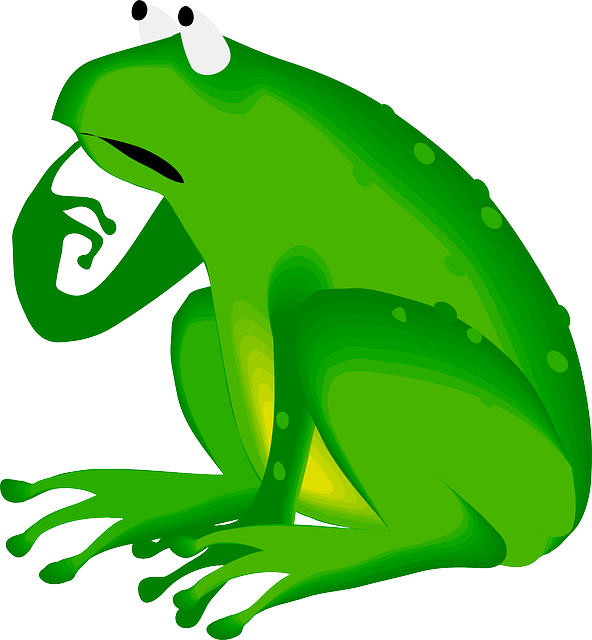 Frog, Green, Animal, Amphibian, Thinking, Worrying
