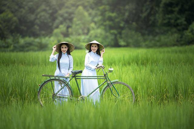 Bicycle, Woman, Green, Hats, Countryside, Ancient, Asia