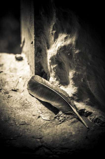 Feather, Window, Ancient Building, Gothic, Creepy