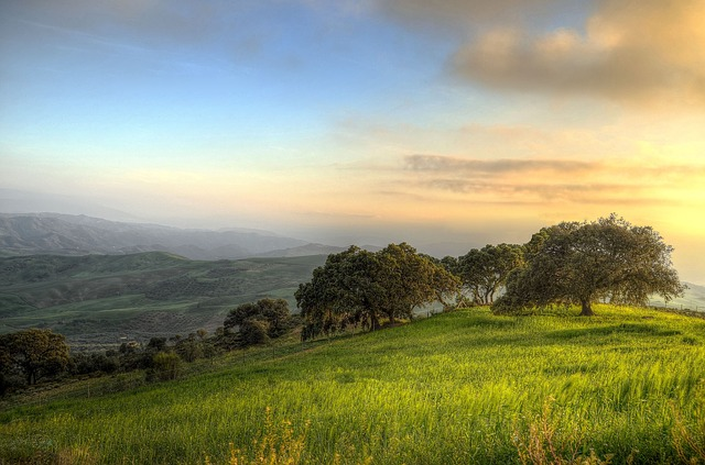 Landscape, South, Andalusia, Holiday, Tourism, Sunset