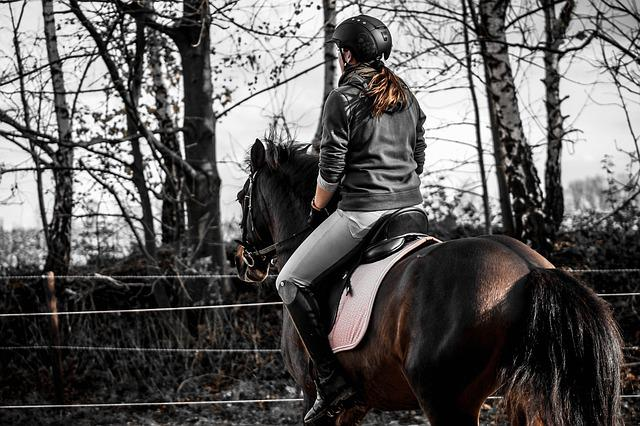 Andalusians, Spanish, Reiter, Ride, Sport, Equestrian