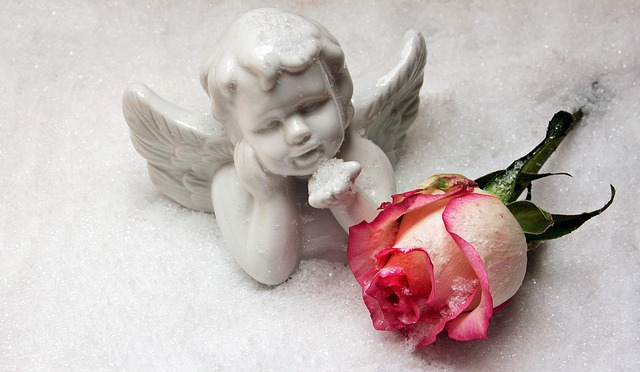 Angel, Angel Figure, Rose, Snow, Christmas