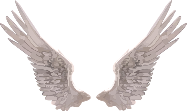 Wings, Angel