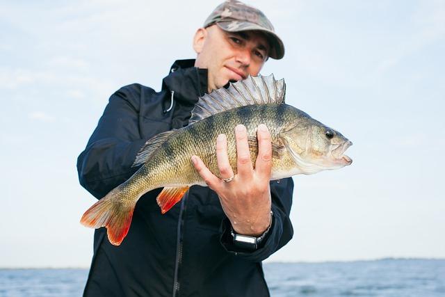 Fish, Perch, Freshwater Fish, Angler, Fischer