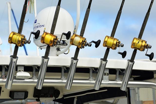 Fishing, Reels, Gear, Rod, Angler, Spinning