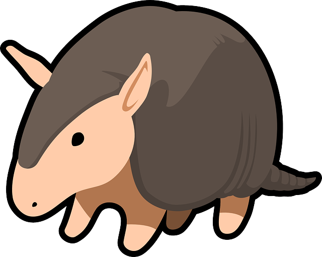 Armadillo, Animal, Mammal
