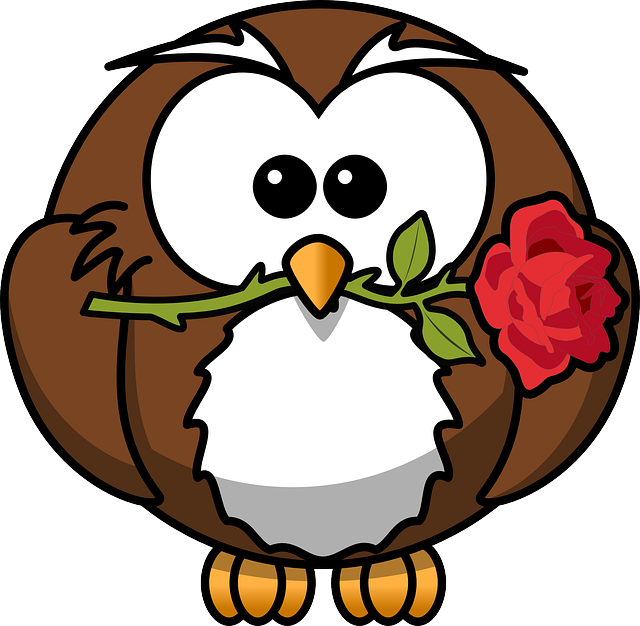 Owl, Animal, Bird, Event, Flower, Funny, Gift, Rose