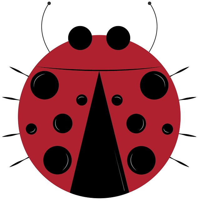 Lady Bug, Bug, Insect, Animal, Clip Art, Polka Dot