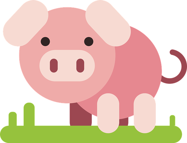 Pig, Animal, Comic, Comic Drawing, Drawing, Flat