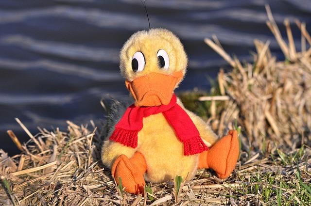 Duck, Bird, Animal, Stuffed Duck, Stuffed Animal