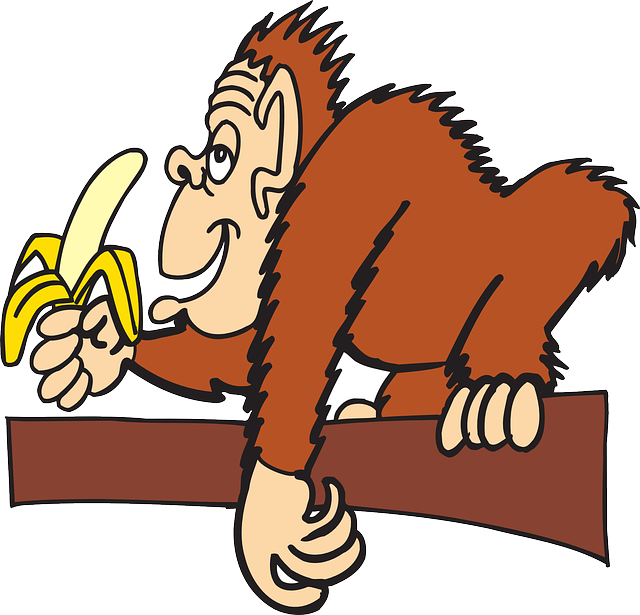 Ape, Branch, Banana, Animal, Peeled, Eating