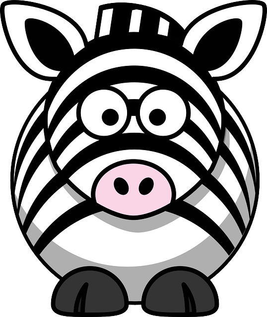 Zebra, Animal, Head, Eyes, Happy, Face, Wild, Funny