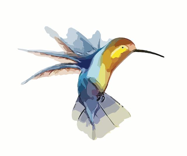 Hummingbird, Bird, Wings, Animal, Fast, Fluttering