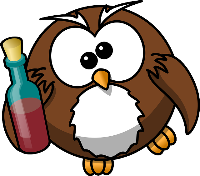 Owl, Drunk, Alcohol, Animal, Beer, Bird, Bottle, Funny