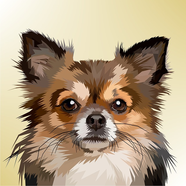 Animal, Decoration, Dog, Design, Geometry, Nature, Pop
