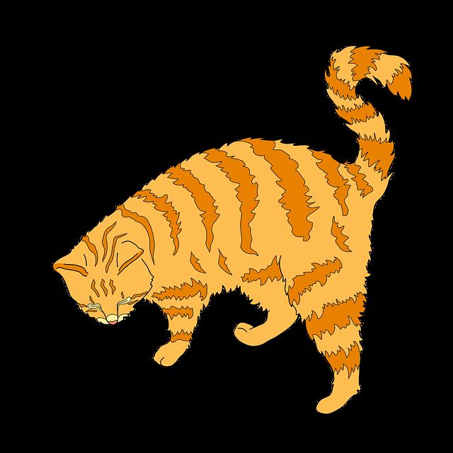 Cat, Ginger Cat, Cute Cat, Ginger, Animal, Feline