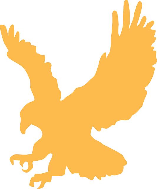 Eagle, Gold, Wings, Animal, Landing, Silhouette, Bird