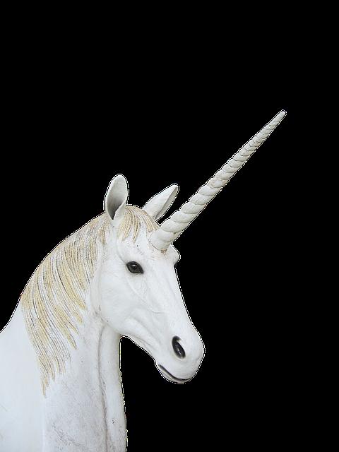 Png, Unicorn, Animal Magic, Fantasy
