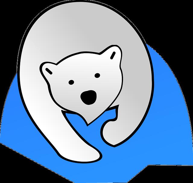 Polar Bear, Bear, Polar, Nature, Wildlife, Animal