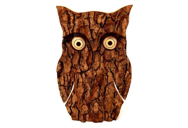 Owl, Tree Bark, Animal, Eagle Owl, Funny, Forest