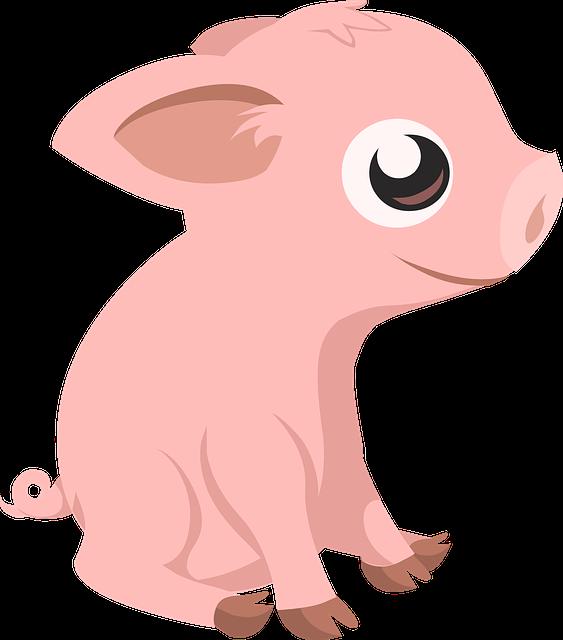 Pig, Piglet, Farm, Animal, Mammal, Piggy, Livestock