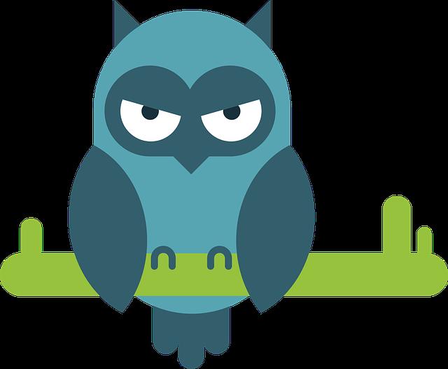 Owl, Comic, Animal Portrait, Animal Picture, Design