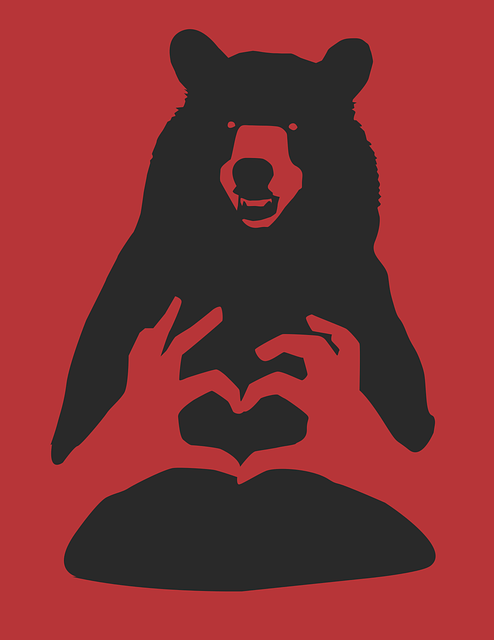 Bear, Red, Black, Cartoon, Wildlife, Nature, Animal