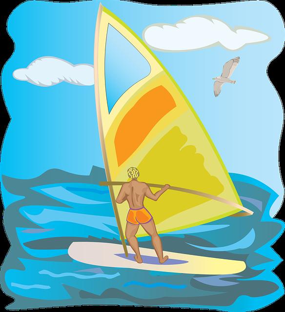 Sketch, Summer, Sea, Animal, Sun, Sailing, Wind, Ocean