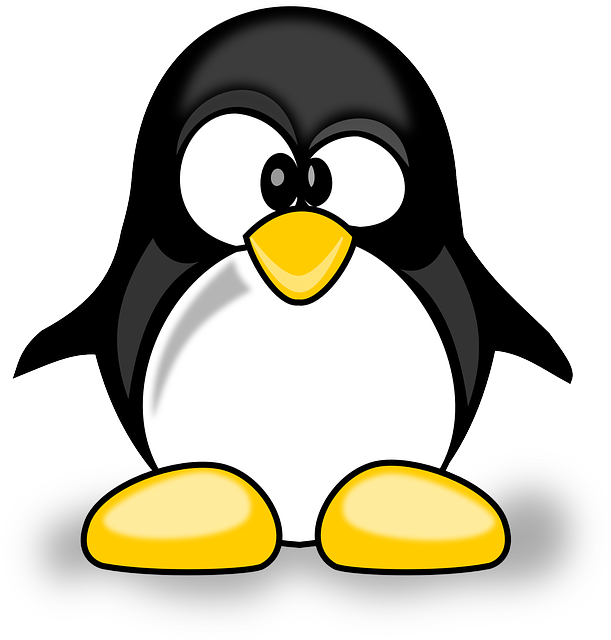 Animal, Cute, Penguin, Tux