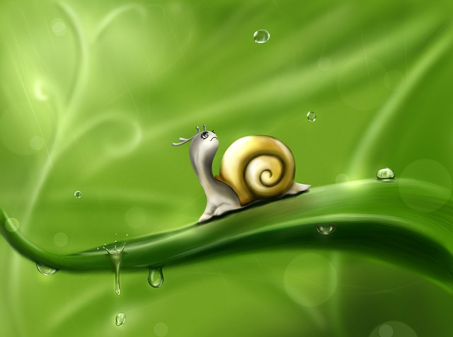 Snail, Drops, Rain, Drawing, Green, Weather, Animal
