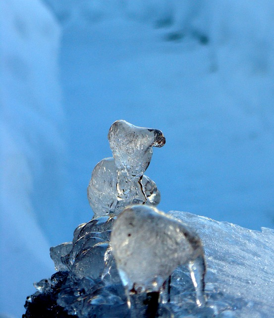 Ice, Ice Sculpture, Animals, Fantasy, Art, Ice Art