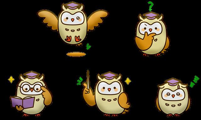 Owl, Wise, Bird Of Prey, Wisdom, Animal Owl, Animals