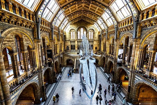 Museum, England, Uk, Indoors, Science, Animals, Bones