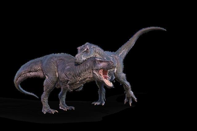 Nature, Animals, Dinosaur, Tyrannosaurus Rex, T Rex