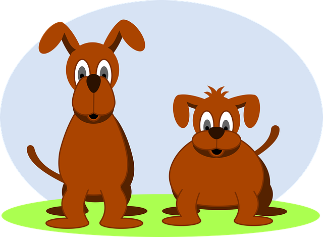 Dogs, Dog, Animals, Mutts, Pets