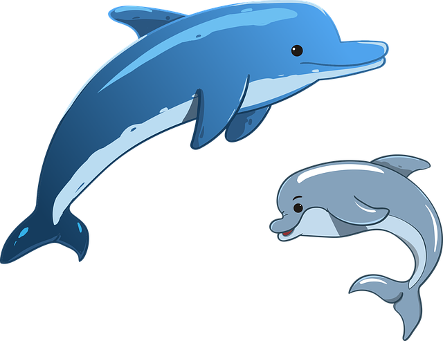 Dolphin, Sea, Animals, Mother And Child, Mammals