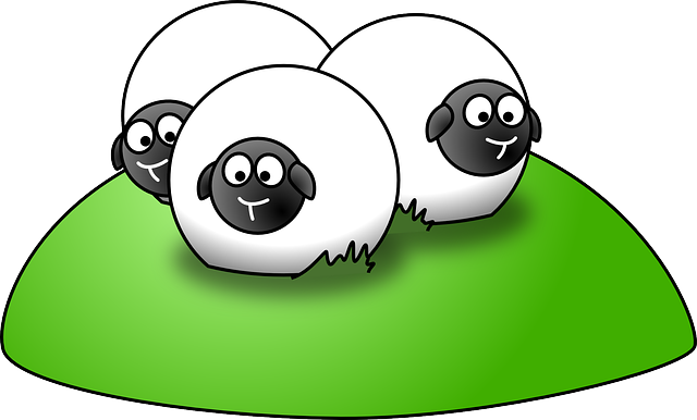 Sheep, Agriculture, Hill, Group, Flock, Three, Animals