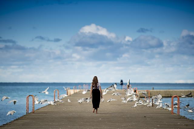 Animals, Birds, Clouds, Gulls, Ocean, Person, Pier, Sea